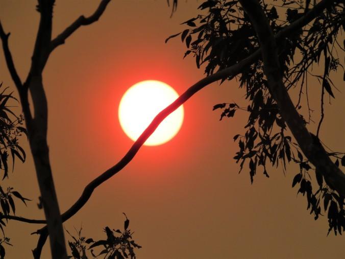 Sun at 4